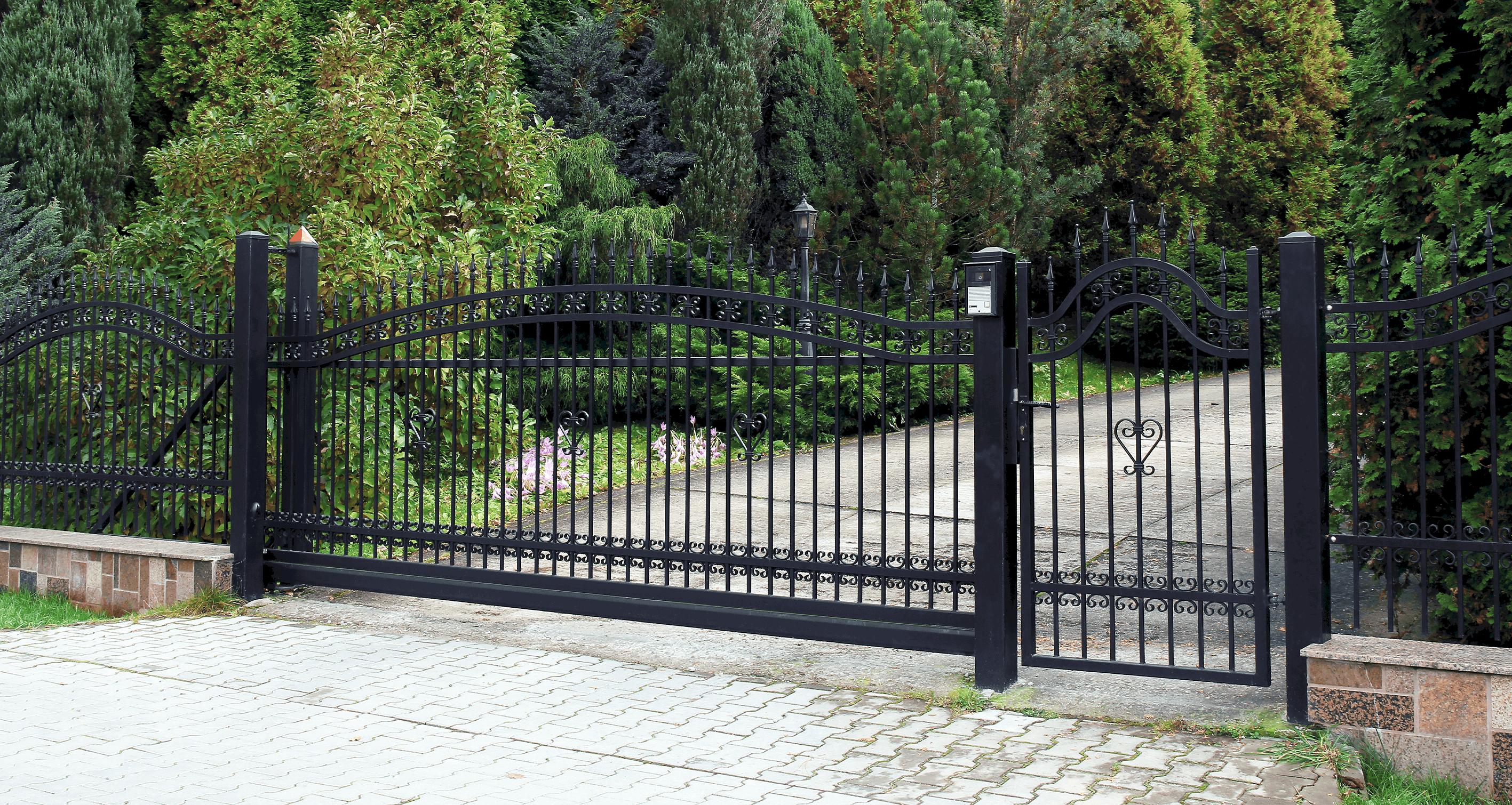 one way door gate 1
